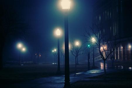 灯,城市,有雾,雾,晚上,晚上