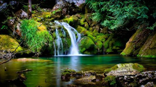 小溪,瀑布,湖泊,树木,美女,青苔,石头,沉默