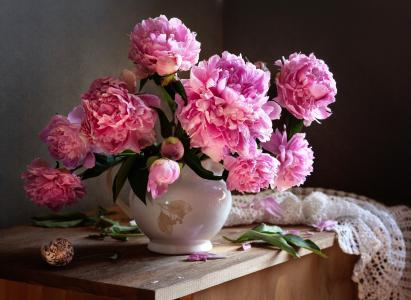 水罐,鲜花,牡丹,叶子,壳,披肩