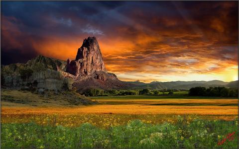 自然,日落,山,草原,美国,野花,艺术,美丽