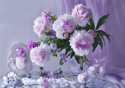静物,花瓶,鲜花,牡丹,花瓶,棉花糖,镜子,窗帘,花瓣