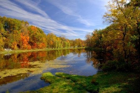 秋天,公园,池塘,性质