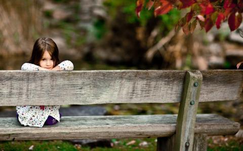 情绪,孩子,照片,女孩,女孩,看,公园,森林,微笑,微笑,微笑,座位,长凳,板凳,树,板
