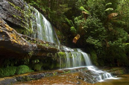 水,山,树,森林,大自然,宽屏