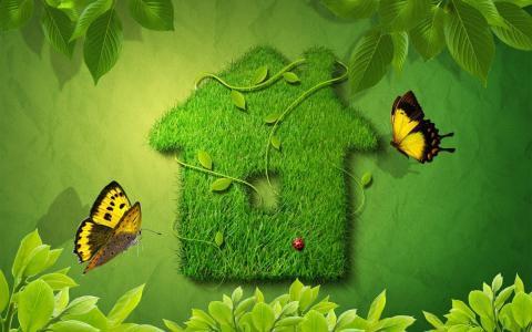 草房子,蝴蝶,叶子