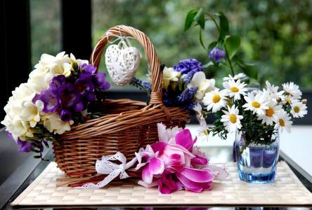 风信子,鲜花,仙客来,小苍兰,篮子,洋甘菊