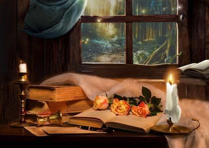 瓦伦蒂娜科洛娃,静物,窗户,书籍。