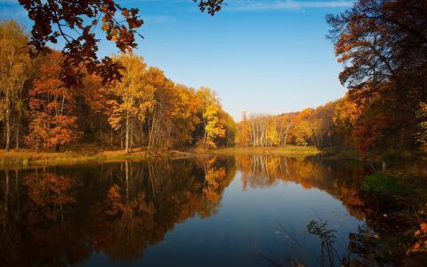 性质,秋季,池塘