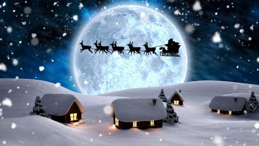 房子,动物,冬季,天空,新年,夜,性质,雪,圣诞老人