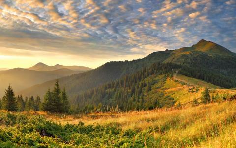 风景,照片,大自然,草,丘陵,光,早晨,云,云,山,宽屏桌面壁纸,宽屏壁纸2560x1600