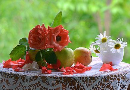 性质,夏天,表,鲜花,玫瑰