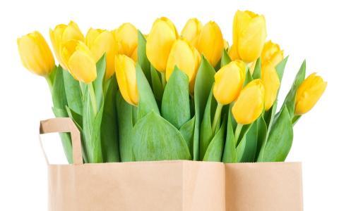 郁金香,鲜花,性质,花束,花,黄色,春天