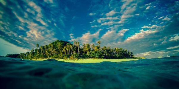 自然,热带地区,岛,手掌,天堂,美丽