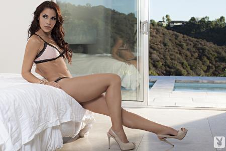 Chelsie法拉,花花公子,女孩,modelb窗口,房子,游泳池,反射