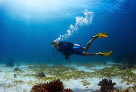 潜水,照片,在水之下
