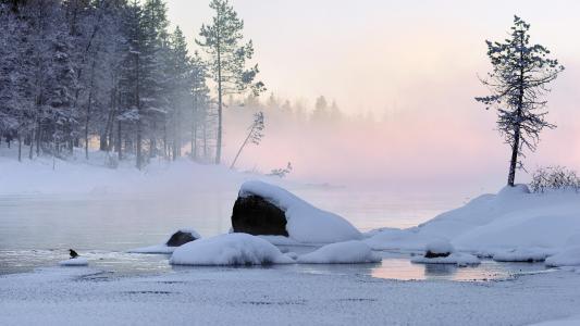 自然,雪,冬天,雪,雪,雪