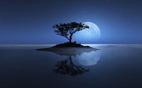 自然,树,星星,月亮,月光,岛