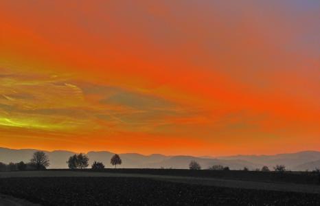 天堂别致,天空,美女,地平线,田地,树木