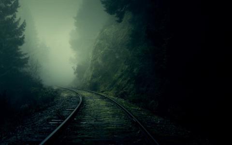 道路,森林,黑暗,美丽