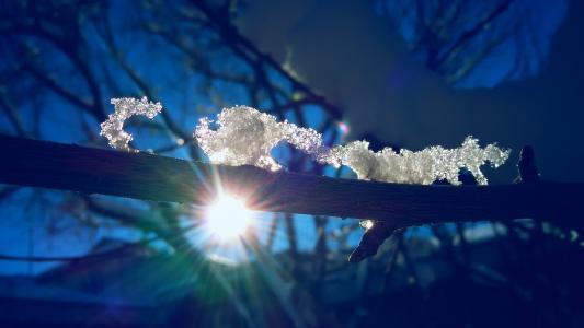 冬天,太阳,雪