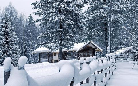冬天,山,雪,树,路,太阳,天空,蓝色