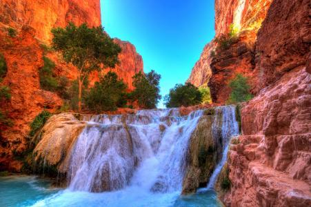 美国,公园,瀑布,树木,峡谷,岩石,海狸,瀑布,大峡谷,国家公园,亚利桑那州,性质