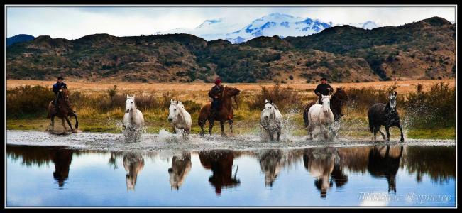 智利,高胡,河流,山脉,马匹,骑兵