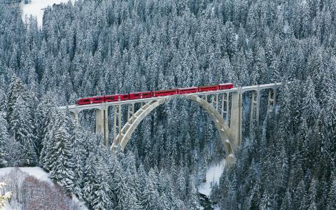 瑞士,阿尔卑斯山,森林,冬天,性质,火车,桥,火车,超级照片