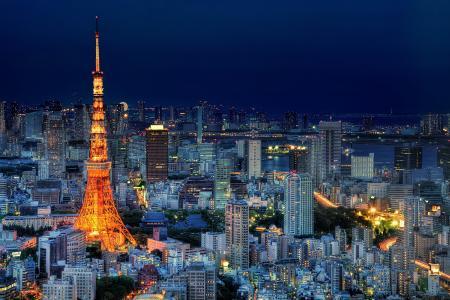 日本,东京,首都,日本,东京,首都,大都会,灯光,照明,塔,房屋,建筑物,摩天大楼,夜间,蓝色,天空