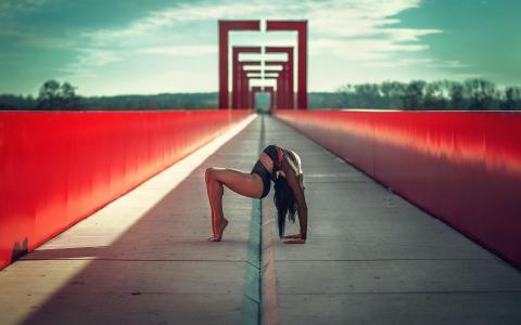 女孩,姿势,体育,艺术,体操运动员,桥,时尚
