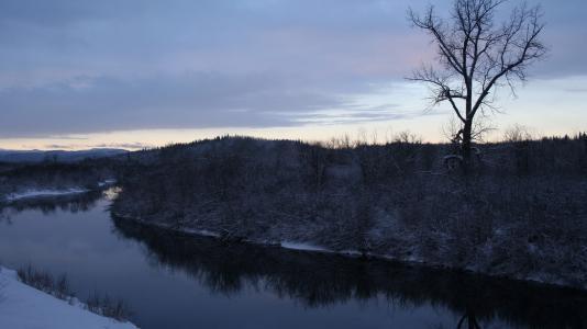 河转,雪,光秃秃的树