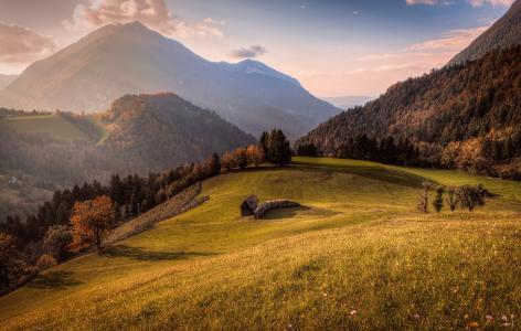 自然,山,极端,娱乐,森林,超级照片,秋季,鲜花,番红花