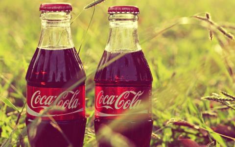 可口可乐,可口可乐,瓶子,标签,草