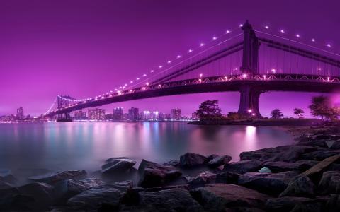 美国,桥梁,城市