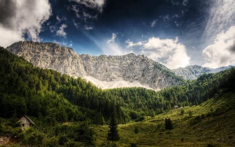 夏季高山景观,木屋,松树林,绿树,落基山峰,阿尔卑斯山,天空,奥地利
