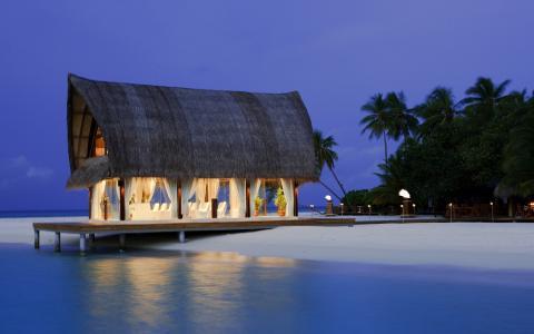 房子,天堂,海,沙滩,棕榈树