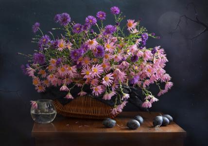 桌子,篮子,鲜花,菊花,水果,李子