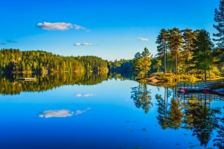 性质,码头,湖,森林,美丽,丘陵,水,镜子