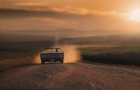 汽车,道路,领域,女孩开车