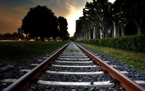 火车线,树木,城市,日落