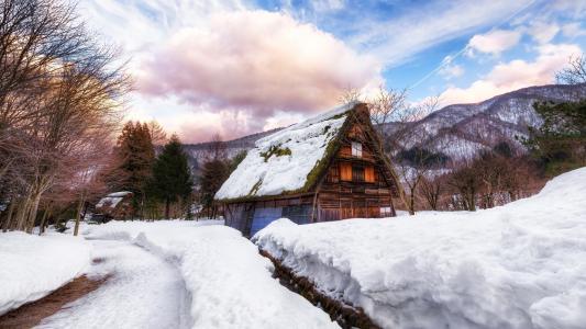 日本,村庄,房子,厚厚的积雪,冬天,树木,云彩