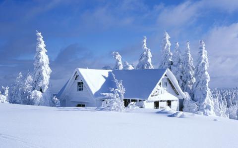 冬天,房子,森林,雪,房子和舒适,性质