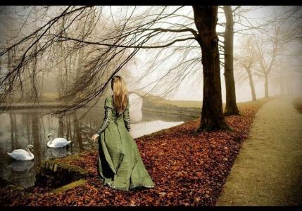 树,落叶,池塘,天鹅,女孩