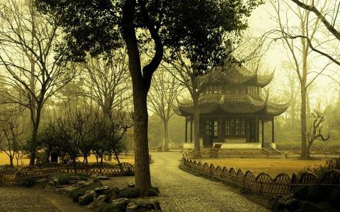 日本,公园,树木
