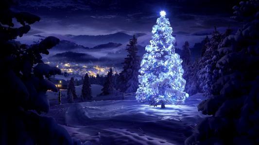 圣诞树,黑暗的背景