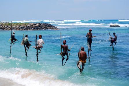 斯里兰卡,男人,钓鱼,自然