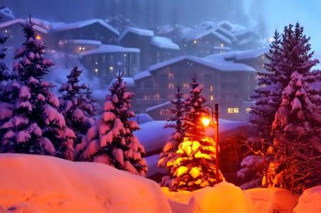 城市,房子,冬天,雪,树,冷杉,晚上