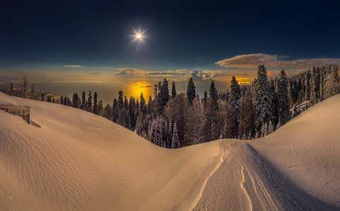 阿布哈兹,山,夜,冬天,满月,月亮,黑海,雪,森林,冷杉,质地,拉什科夫Fedor
