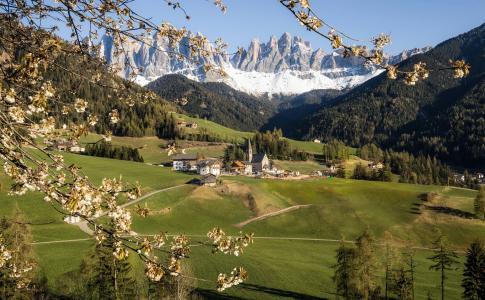 山脉,莱纳举行,盛开,意大利,春天,阿尔卑斯山,南蒂罗尔,白云石