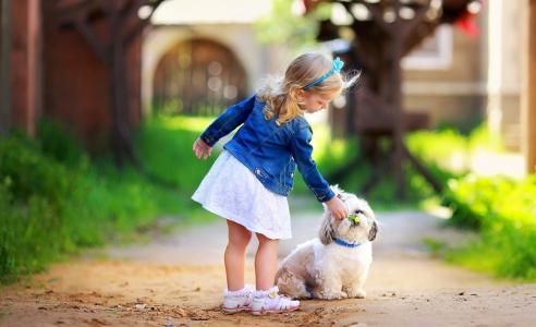 女孩与一条狗